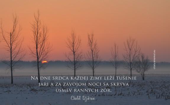 Na dne srdca každej zimy leží tušenie jari a za závojom noci sa skrýva úsmev ranných zôr.