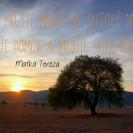 Čo môžete urobiť pre svetový mier? Bežte domov a milujte svoju rodinu.