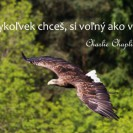 Kedykoľvek chceš, si voľný ako vták.