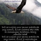 Drž sa svojich snov pevne: pretože ak sny zomrú, Život zostane ako vták so zlomenými krídlami, ktorý nemôže lietať. <br/>Drž sa svojich snov pevne, pretože ak sny zomrú, Život je neúrodným poľom zamrznutým pod snehom.