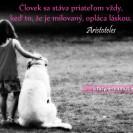 Človek sa stáva priateľom vždy, keď to, že je milovaný, opláca láskou.